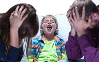 Истерика у ребенка: причины, проявления, способы устранения