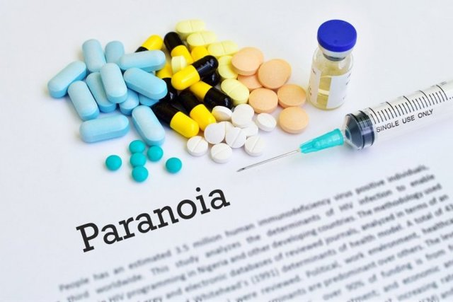 Паранойяльный синдром: проявления и способы коррекции