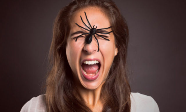 Арахнофобия (боязнь пауков): причины, симптомы, лечение