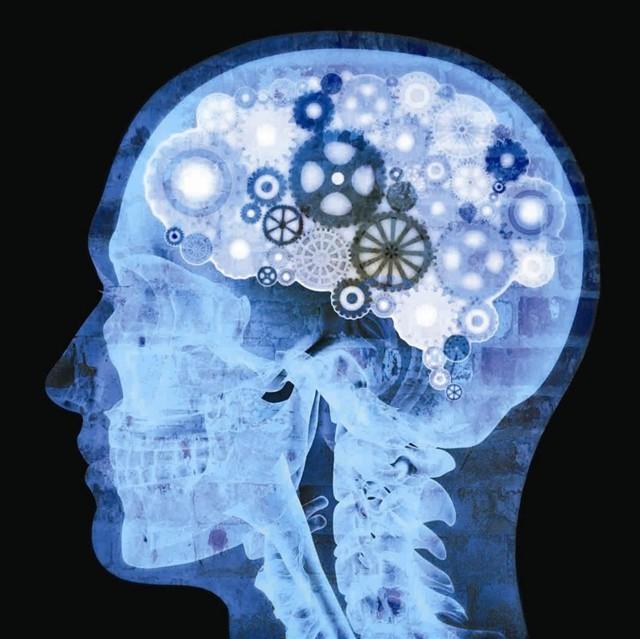 Нейропсихологическая коррекция: что это, цена и отзывы